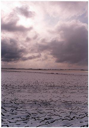 0°00' longitude, 52°28N' View from Vermuden's Drain, Cambridgeshire, 2001
