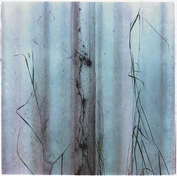 Grass, Northwich, 1987