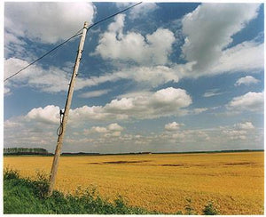 Telephone Pole I, White Horse Road, Cambridgeshire 2005