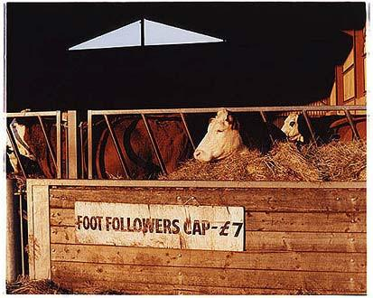 Race course - Foot Followers, Cottenham, Cambridge 2002