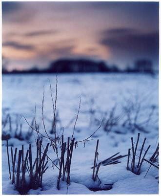 Snow, Binham, Norfolk 2003