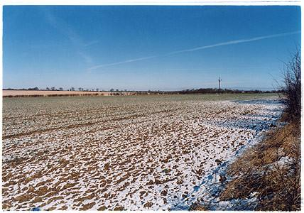 0°00' longitude, 52°11N' latitude, Field North of Toft, Cambridgeshire, 2001