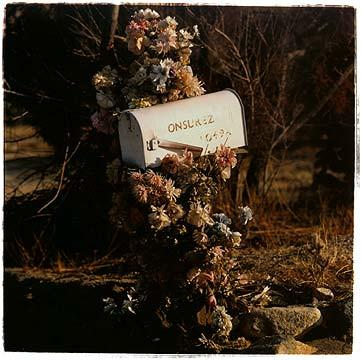 Onsurez mailbox, Joshua Tree California 2002