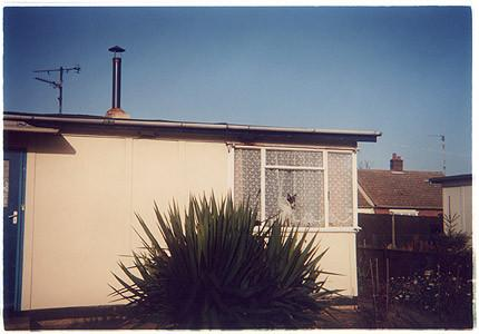 Dog in Window, Post War Prefab, Chatteris 1993