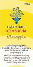 Load image into Gallery viewer, Kombucha tea - Pineapple flavour (200ml)