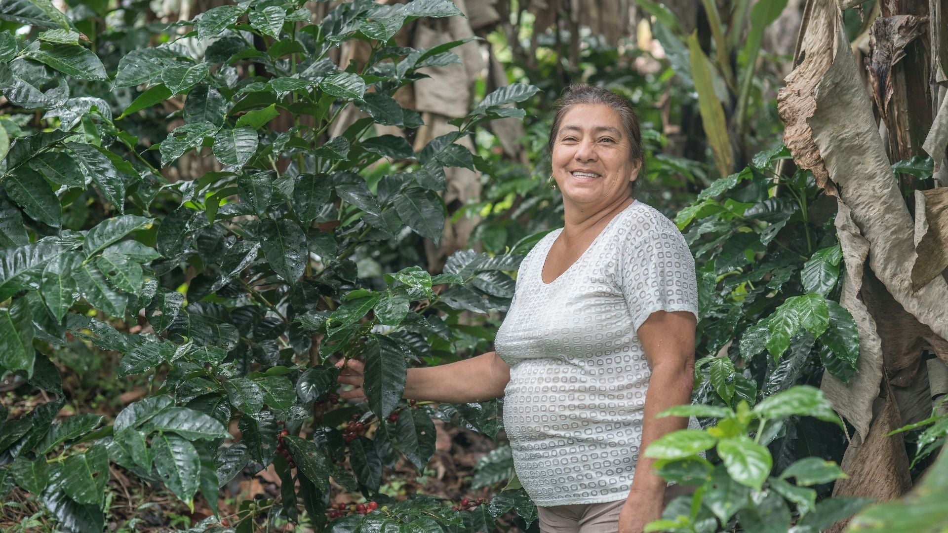 Colombian Café Femenino - Image courtesy of Fair Trade TRANSFAIR USA