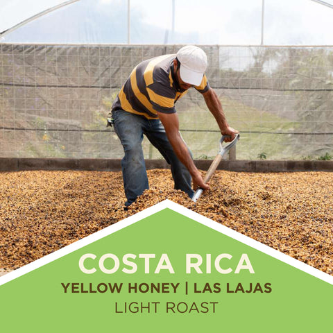 Costa Rica - Las Lajas Micro-Mill - Finca La Julia - Yellow Honey