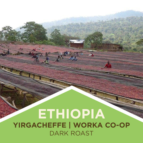 Ethiopia | Yirgacheffe/Worka Coop Farmer Select - Dark Roast