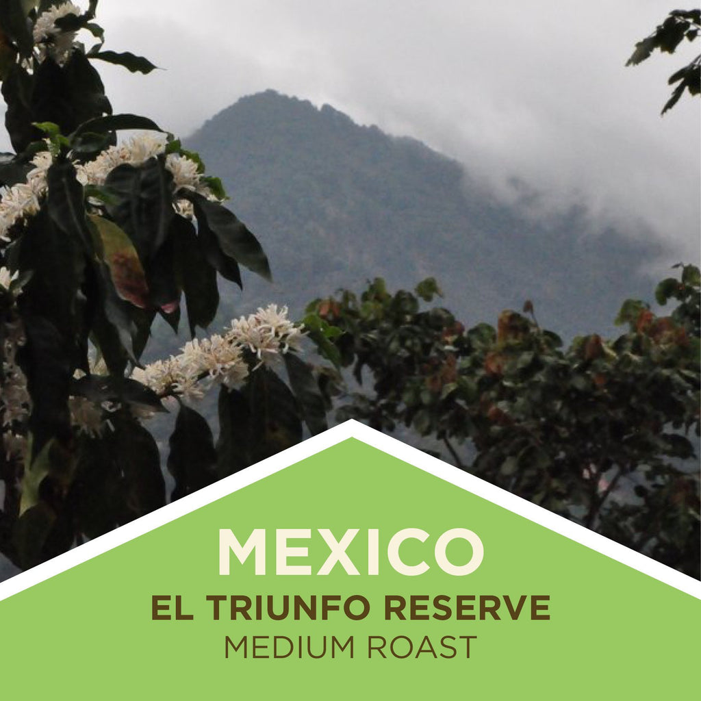 Mexico | El Triunfo Reserve - Medium Roast