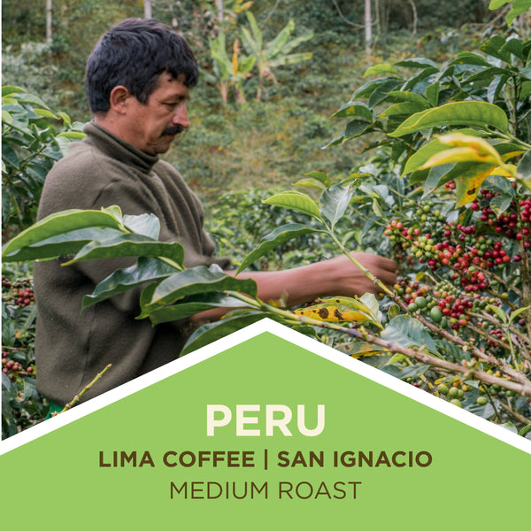 Peru | Lima Coffee - Medium Roast