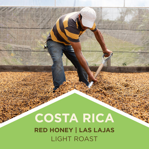 Costa Rica - Las Lajas Micro-Mill - Finca Las Lajas - Red Honey
