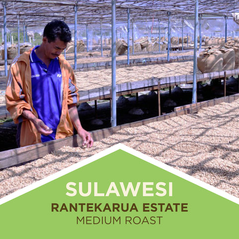 Sulawesi | Rantekarua Estate - Medium Roast