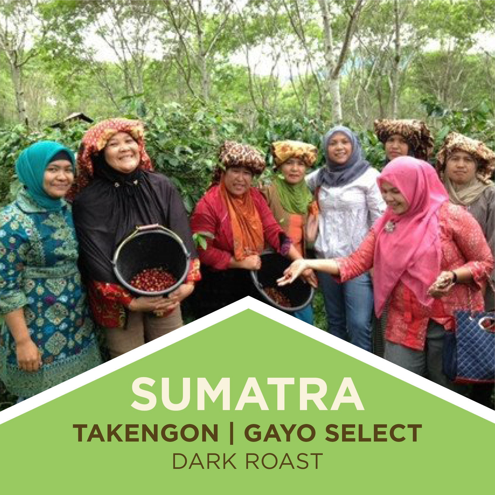 Sumatra | Takengon Gayo Select | Dark Roast