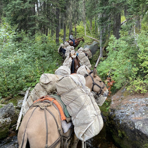 Lot# 4 - Ready Outfitters: Idaho Elk Hunt