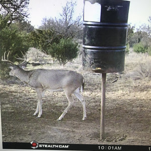 Lot #2 Western Oklahoma Outfitters: Whitetail Hunt