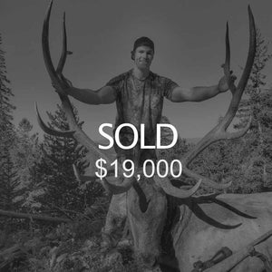 Lot #10: 2020 Central Mtns, Manti; Bull Elk - Multi-Season