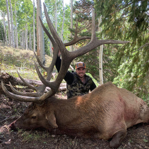 MDF Midway - LOT 15: Bull Elk, Wasatch Mountains, Any Weapon<b>(Live Auction March 27, starting at 8:00 PM MST, online bidding allowed)</b>