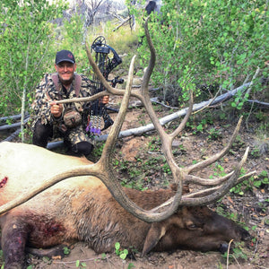 Lot #12: 2020 Paunsaugunt; Bull Elk: Multi-Season