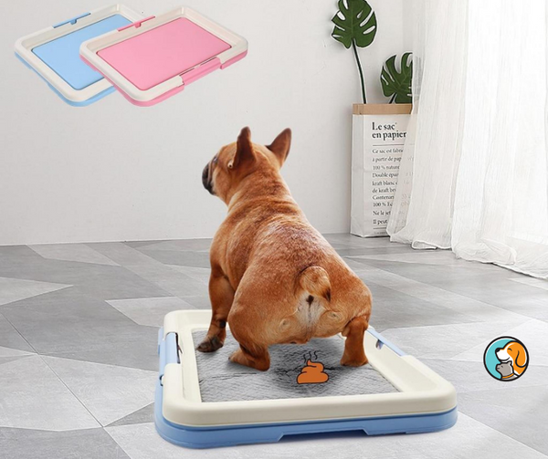 Indoor Potty Pet Toilet
