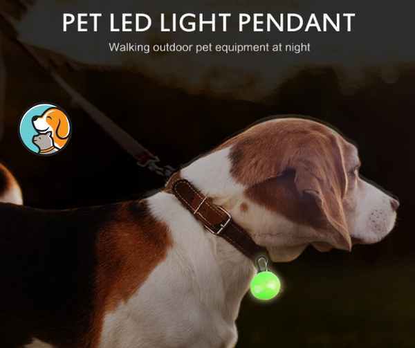 Secure Pet Night Safety Glowing Pedant