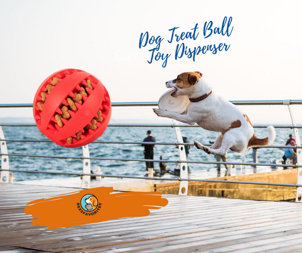 Adjustable Dog Treat Ball Toy Dispenser