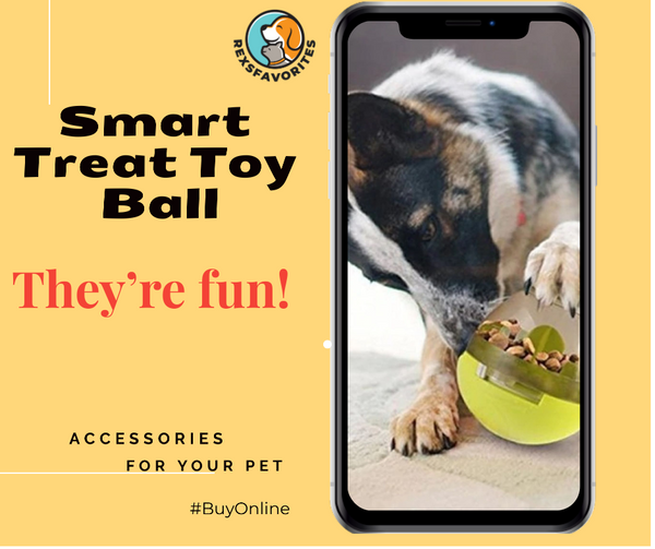 smart-treat-toy-ball.jpg