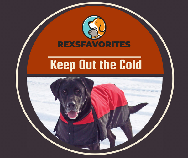 warm-waterproof-dog-vest-jacket.jpg