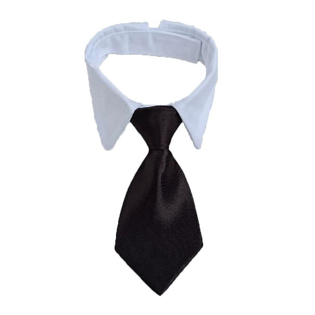 Dog Cat White Collar Striped Bow Tie