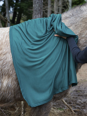 Fast Dry Towel on Horse