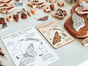 Butterfly Life Cycle Wooden Anatomy Tile + Colouring in Card