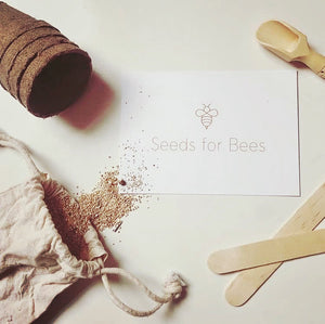 Seeds for Bees Wildflower Grow Kit