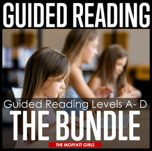 Guided Reading Level D Curriculum is here! This level of Guided Reading will move students to a more independent level of reading with simple stories, basic sight words, and targeted reading strategies