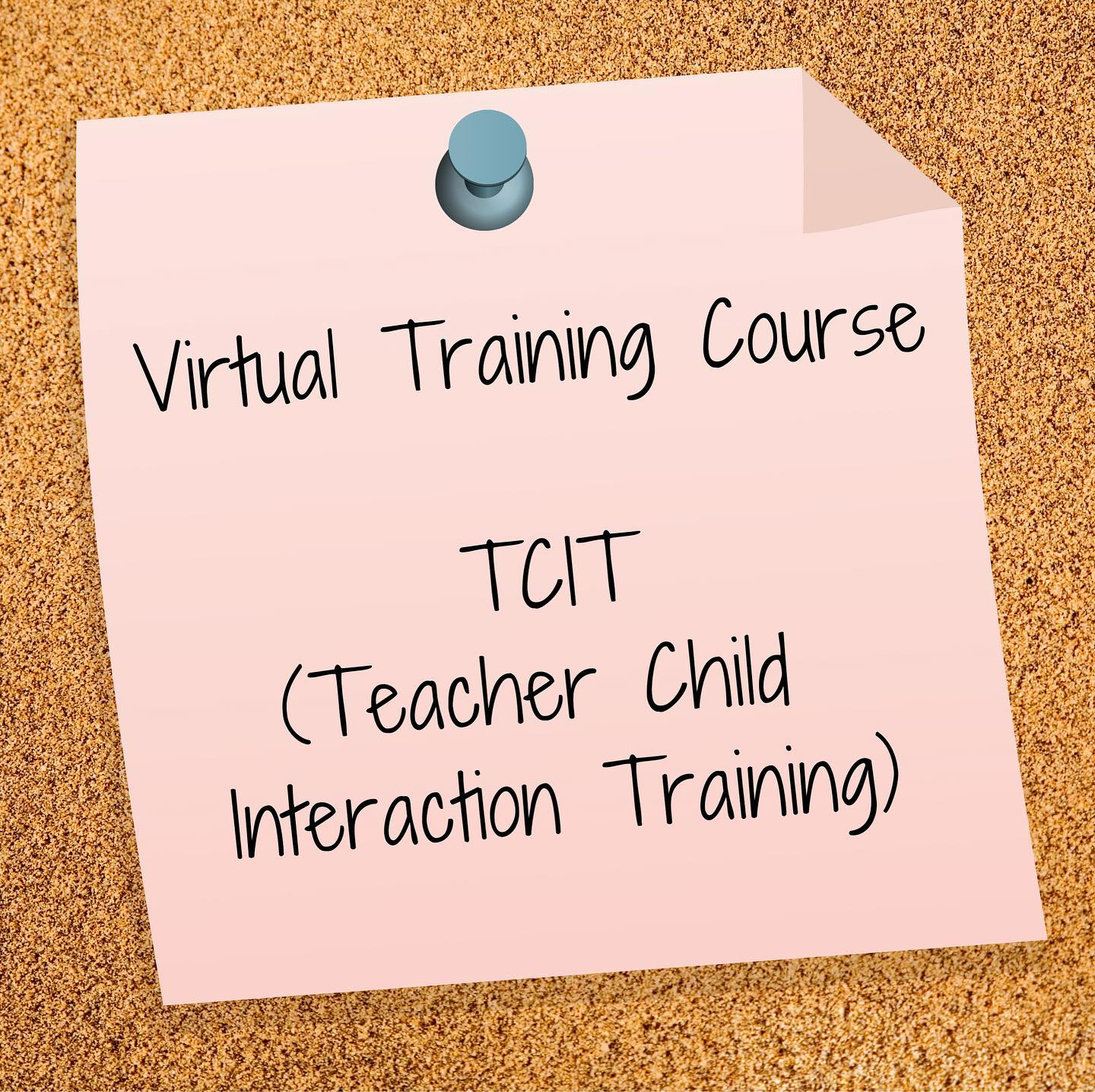 Virtual Training Course - Teacher Child Interaction Training (TCIT)