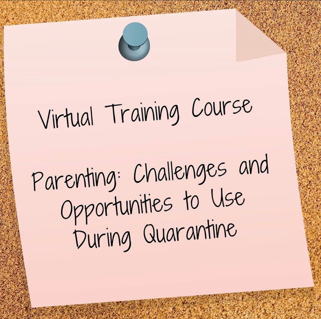 Virtual Training Course - Challenges and opportunities to use during quarantine