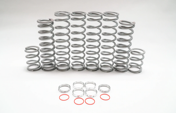 Shock Therapy Polaris Turbo S (DRS) Dual Rate Spring Kit