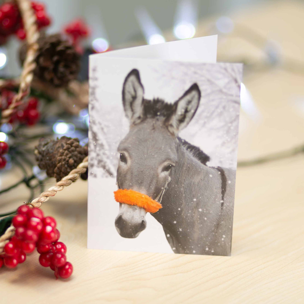Christmas donkey cards