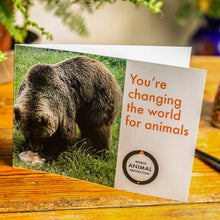 Load image into Gallery viewer, A bear eating a treat in a bear sanctuary. Credit Line: World Animal Protection