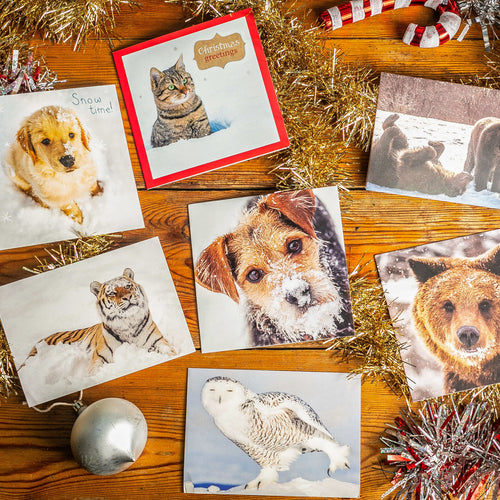 Lucky dip Christmas cards