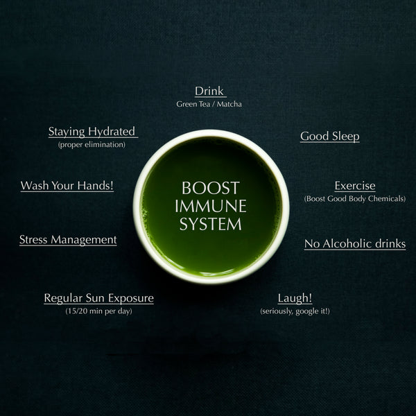 Green tea boost immune system