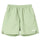 Stock Water Short - Mint