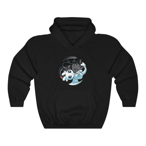 How To Train Your Dragon Light Fury And Night Fury Unisex Hoodie