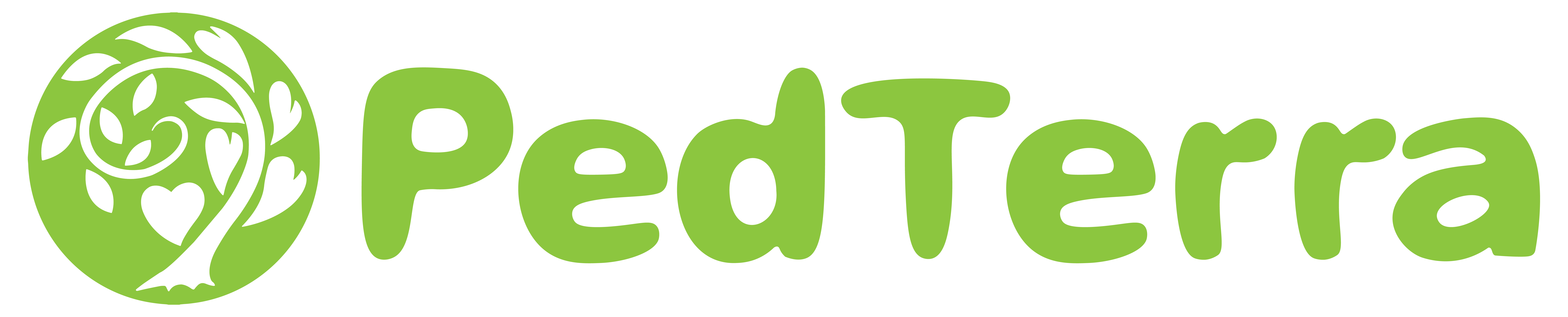 PedTerra Logo and Text