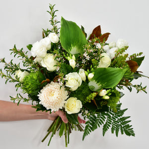 Seasonal white & green fresh flower bouquet, provided by the best flower shop in Ashburton, Victoria. The Branche delivers to Malvern, Malvern East, Ashwood, Camberwell, Glen Iris, Toorak, Ashwood, Burwood, Carnegie, Glen Huntly, Hughesdale, Kooyong, Doncaster and Oakleigh. You will find that the best florist near me is The Branche, Ashburton. Order your fresh flowers or plants online today.