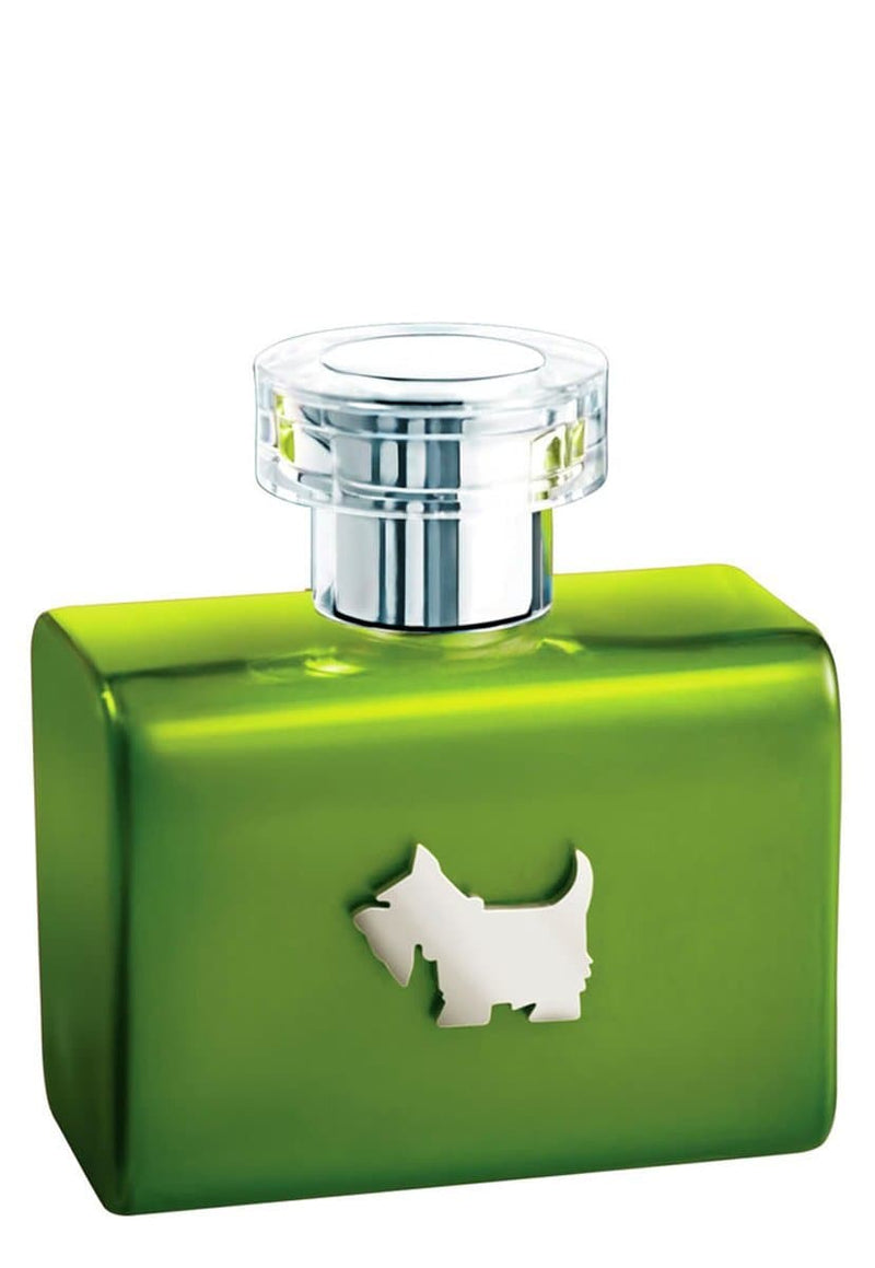 Ferrioni Green Terrier de Ferrioni para Dama Eau De Toilette Spray 100 ml - TrendyShop México
