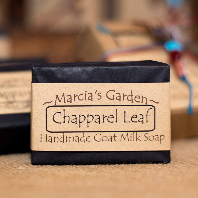 Wildcrafted Chaparral Leaf Soap
