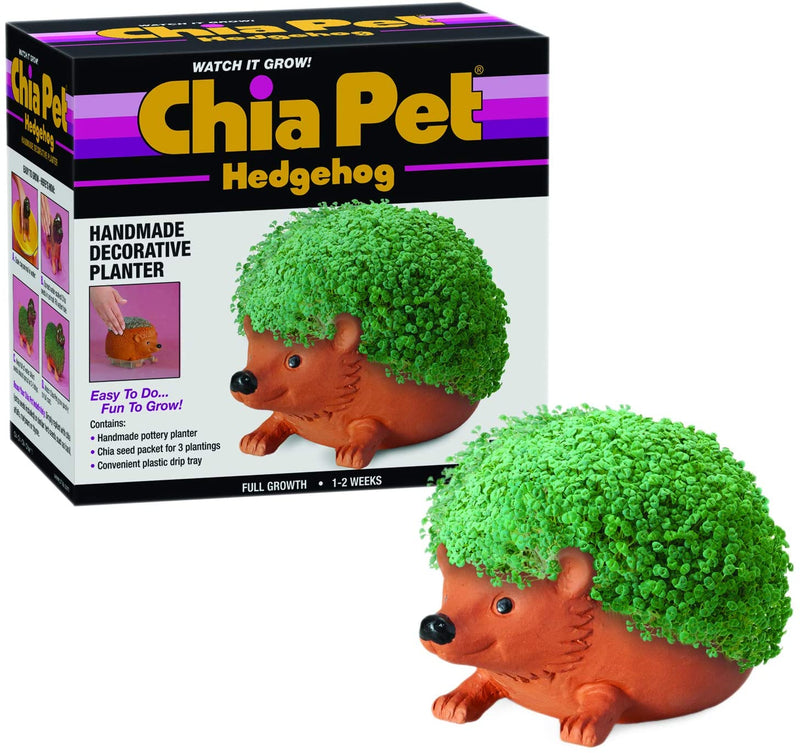 Chia Pet - Hedgehog - Funky Toys