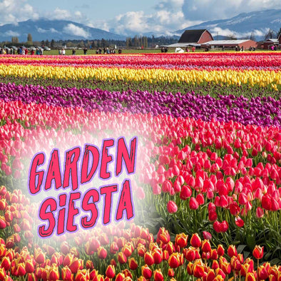 GARDEN SIESTA SOAP - 3 bars