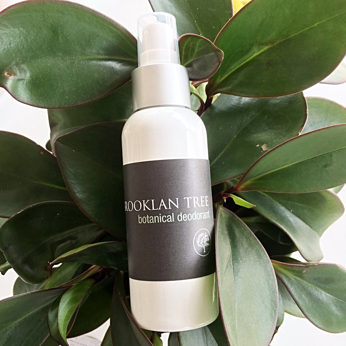 Botanical Deodorant - Brooklan Tree