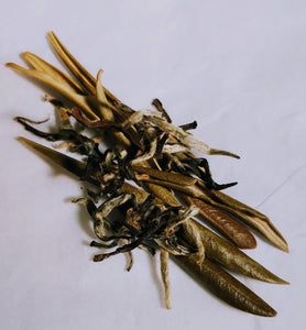 White Olive Leaf Tea 6 Bag Sample Pack