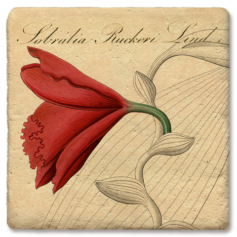 "Tipsy Coasters - Natural Limestone Coaster ""Red Orchid"""